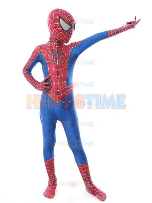 Disfraz de Raimi Spider de Halloween para Niños
